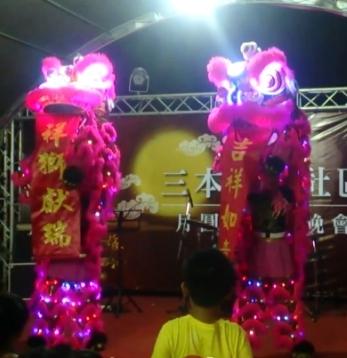 LED電光獅晚會演出